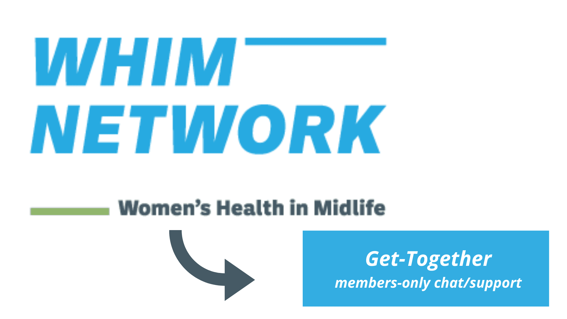 WHIM members Get-Together